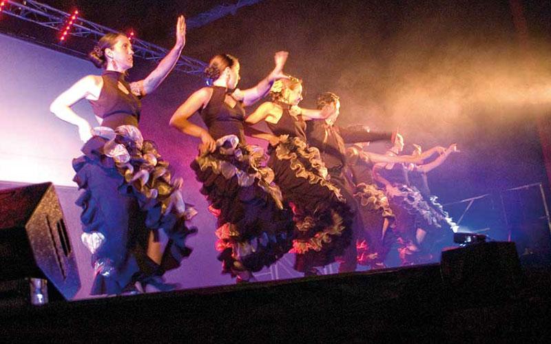 cabaret et dîner-spectacle en Camargue