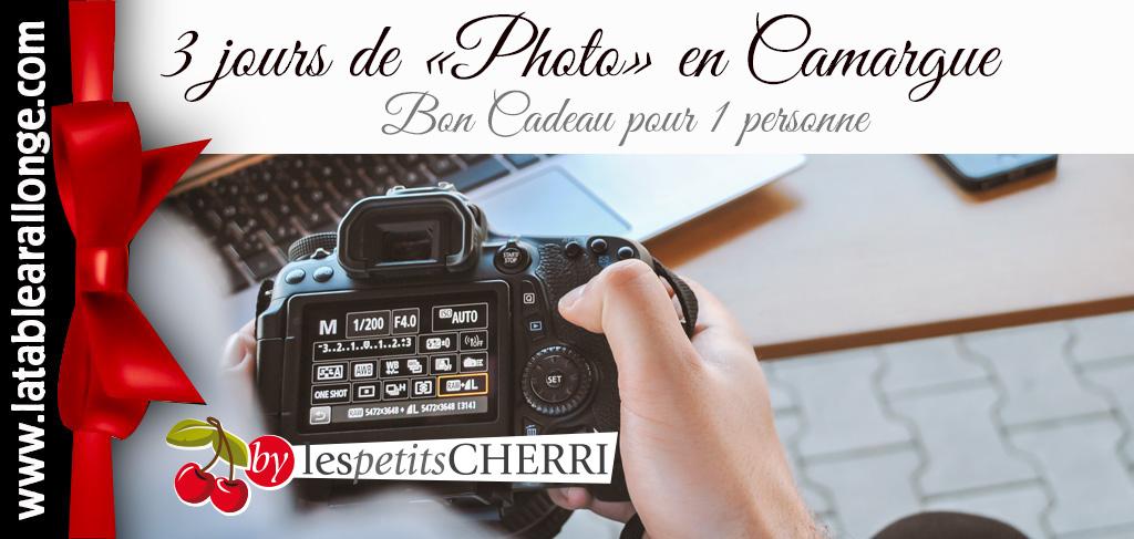 Stage de photo en CAMARGUE avec Cécile DOMENS. Chevaux, étalons, poulains, taureaux, paysages et traditions locales. Accueil logistique à LA TABLE à RALLONGE