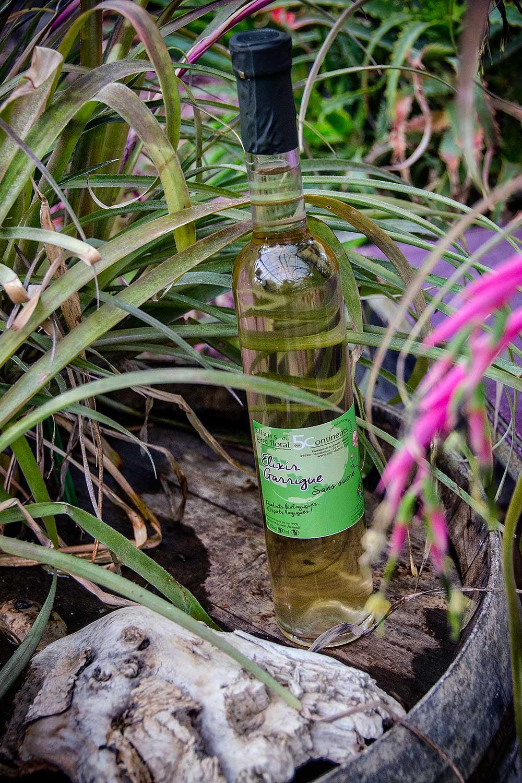 De vrais safaris-photos en Camargue, organisés par LA TABLE à RALLONGE et les Petits CHERRI, au Parc Floral des 5 sens à Marsillargues